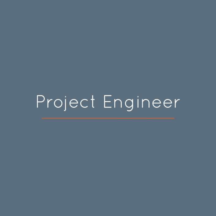 Project Engineer